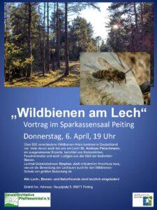 """Einladung zum Vortrag """"Wildbienen am Lech"""" am 6. April in Peiting"""